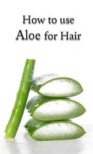 aloe vera for hair growth picture 2