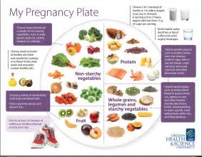pregnancy and diet picture 1
