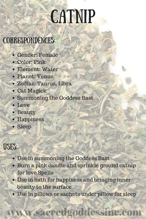 wiccan herbal spells picture 2