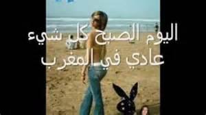 chouha haifaa wahbi m3a sa3odi picture 1