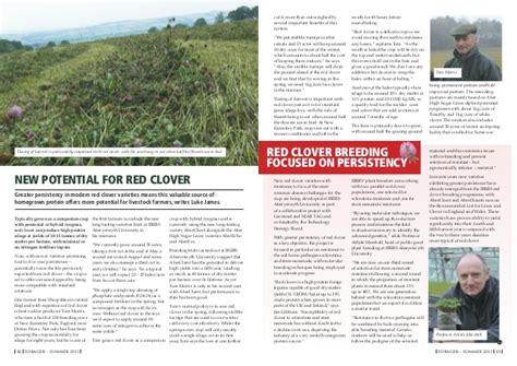 red clover yields picture 7