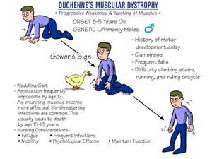 history of muscle disorders picture 7