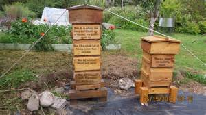 warre hive beekeeping picture 3