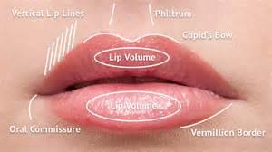 lip augmentation permanent safe fda picture 11