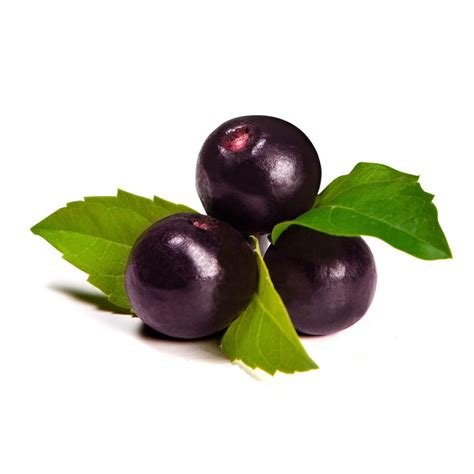 acai berry extract picture 1