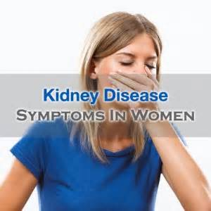 kidney problem symptoms in dachshunds picture 1