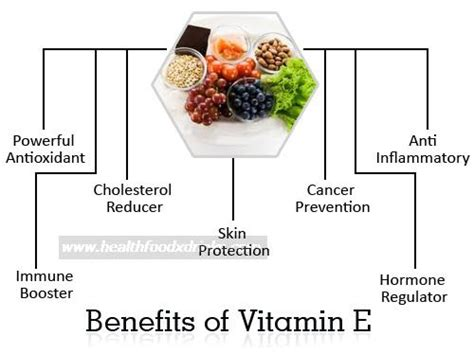 benefits of rogin e vitamins picture 6