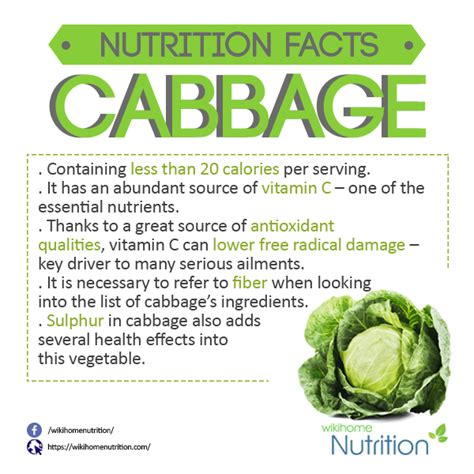 cabbage 20soup 20 diet picture 2