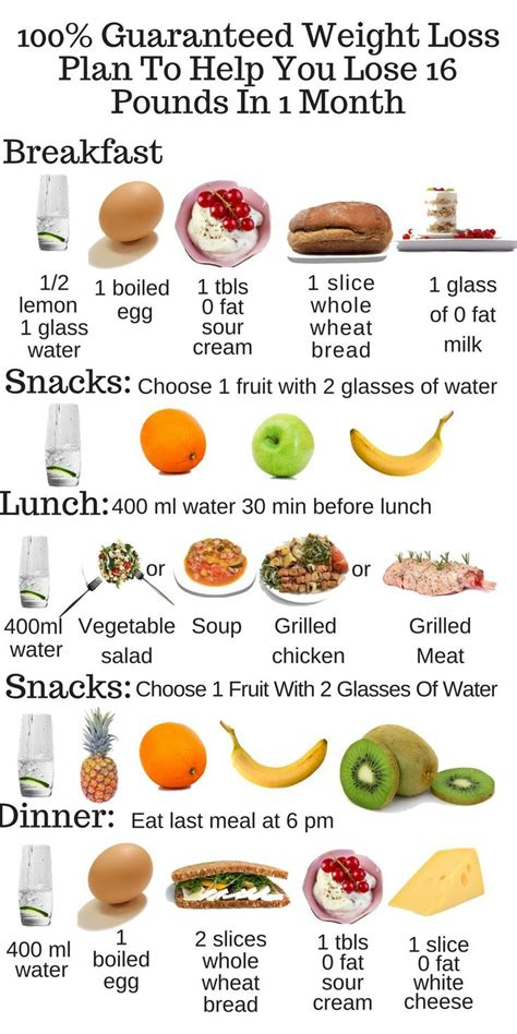 free weight loss plans picture 5