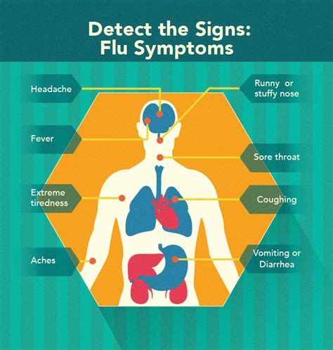 flu symptoms with gastrointestinal symptoms picture 14