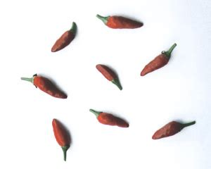 chayanne red pepper erection picture 3