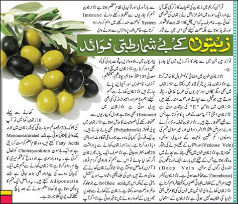 zaitoon oil k fayde picture 13