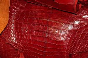 alligator skin wholesalers picture 10