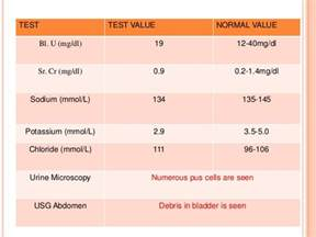 high platelet count bladder picture 19