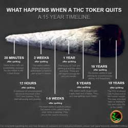 stop smoking pot picture 5