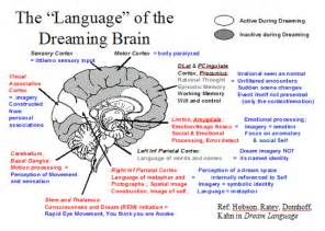 dreams physical psychological changes in sleep picture 7