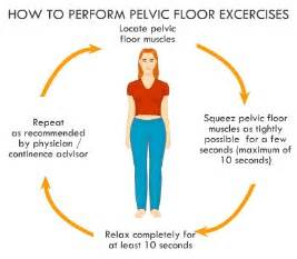 physical therapy exercises diagrams for bladder control picture 3