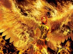 how can individuals buy phoenix lipovicine picture 9