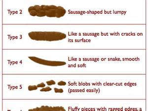 worms in bowel movement picture 18