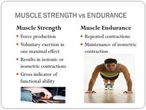 Muscle endurance definition picture 2