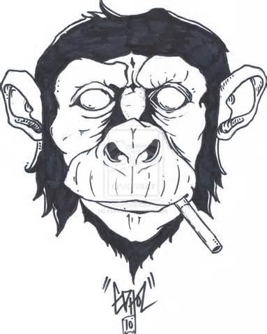 smokin free smoke shop picture 5
