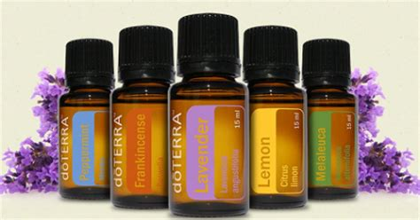 doterra oil to curve appee picture 7