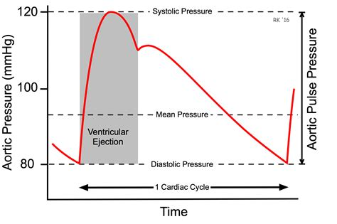 Aortic stenosis blood pressure readings picture 11