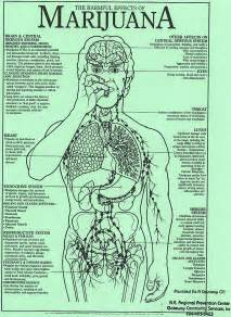 long term side effects of herbal incense smoked picture 11