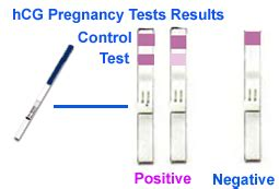 how to read free pregnancy test in fertipill picture 3