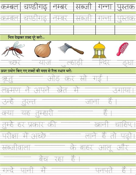 what ir the solution of shighrapatan' in hindi picture 10
