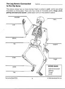 hw do gynaecosid work in d body picture 12