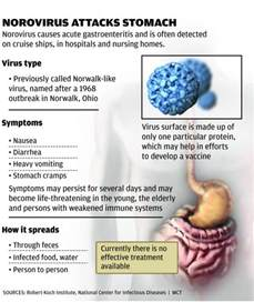 intestinal virus picture 2