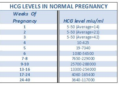 hcg levels during pregnancy picture 9