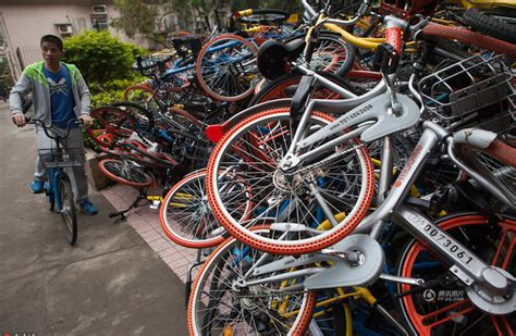 bicycle piles picture 6