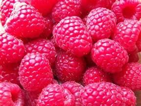 raspberry picture 19