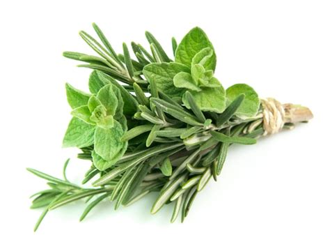 what herbs can cause a miscarriage at 13 picture 9