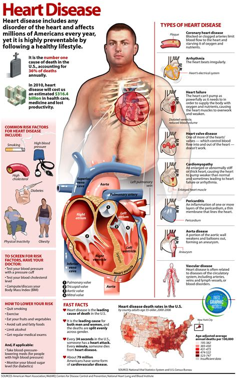 Cholesterol obesity picture 7