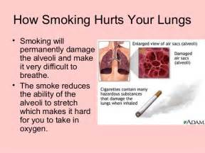 affects of cigar smoke on lung tissue picture 3