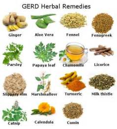 herbal hernia formulas picture 2