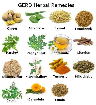 herbal support for gerd picture 5
