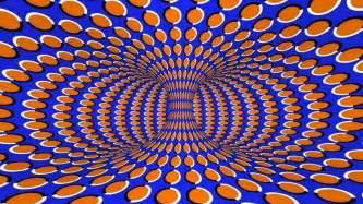 optical picture 6