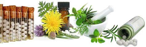 homeo medicine damia plant picture 3