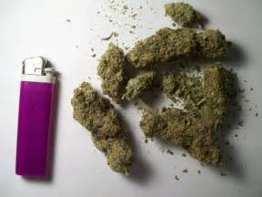15 g de weed picture 6