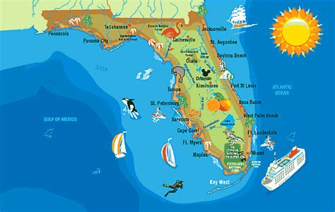 where to buy in florida 2014 picture 14