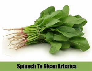 arteries clean herbs picture 1