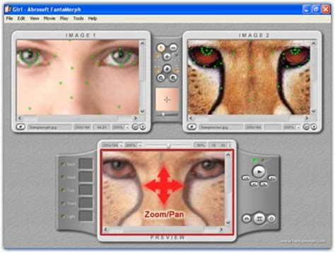 free breast morph software picture 14