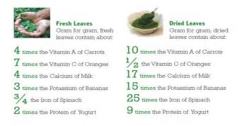 facts about diet pills picture 21