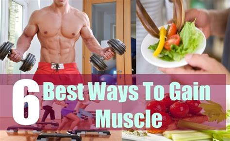 best way to build muscle picture 11
