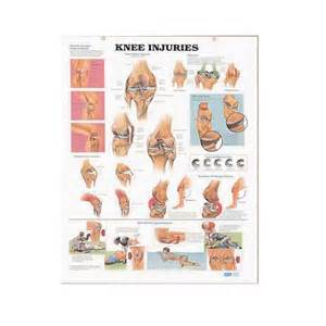 medical consumables store picture 7