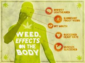 bungle weed effects on the body picture 21